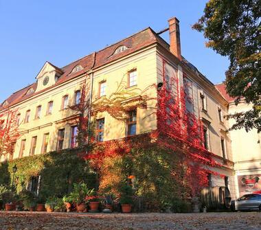 Pałac – XIX-wieczna rezydencja szlachecka k. Raciborza, otoczona 4,5 ha parkiem.