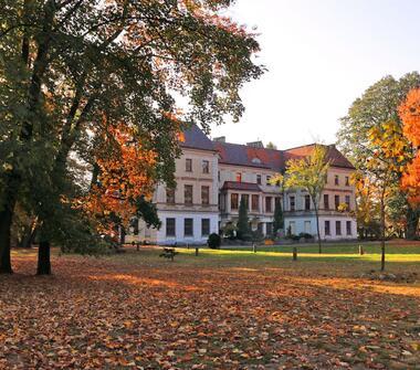 Obiekt idealny na dom seniora, klinikę lub siedzibę firmy w odległości 5 km od Raciborza.